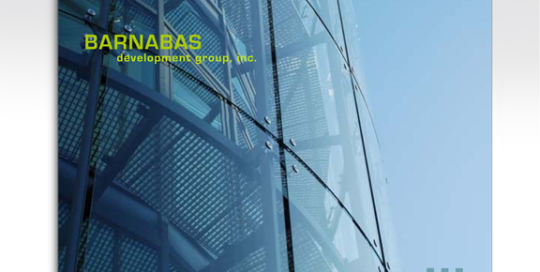 Real Estate Developer Prospectus and Slide Presentation